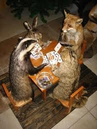 animalsgambling